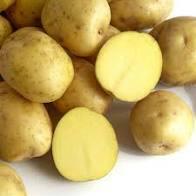 Фото №2 Картофель мытый