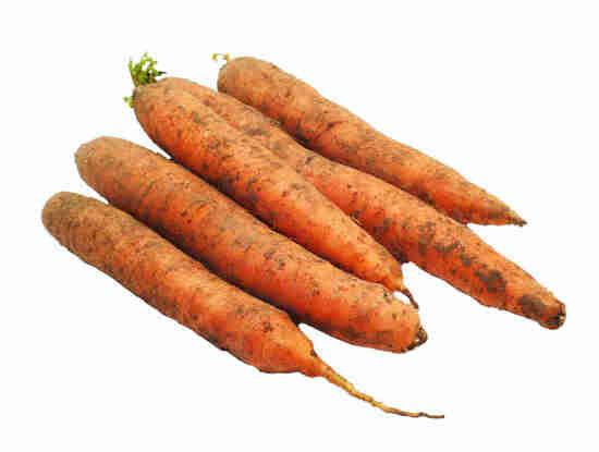 Фото №2 Морковь