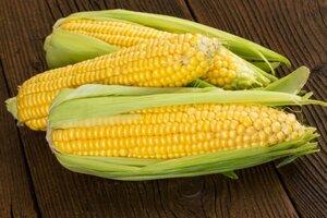 фото Кукуруза початок