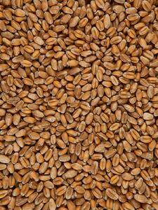 фото ЧЁРНЫЙ ХЛЕБ Пшеница 1 кг*