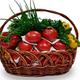 Фото №2 Подарочная корзина овощная маленькая